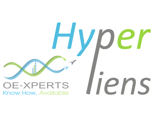 Hyperliens, Excellence Opérationnelle, LEAN, TPS, TOC